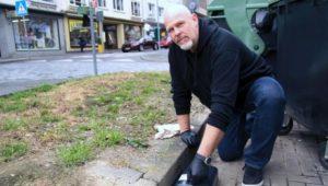 Sie suchen einen regionalen Schädlingsbekämpfer aus Kassel.